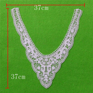 White Eyelet Appliques Cotton Collar Lace (cn58) pictures & photos