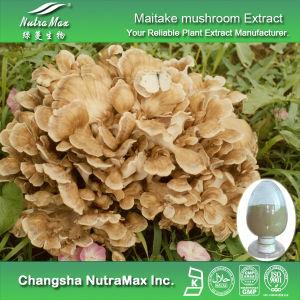 100 Natural Maitake Mushroom Extract (Polysaccharides 10%~50%)