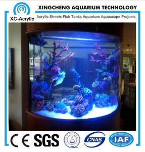 Customized Acrylic Aquarium for Decoration pictures & photos