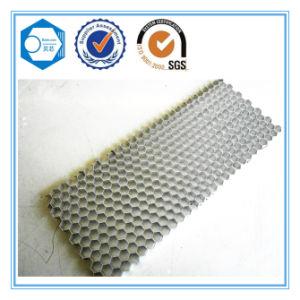 Aluminum Honeycomb Panel for Door pictures & photos