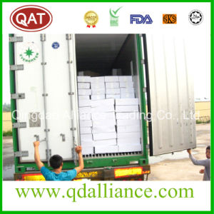 Frozen Chicken Breast with Halal Certification pictures & photos
