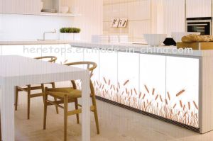 4.5mm---5mm Decorative Glass Kitchen Glass Cabinet Glass Art Glass Kitchen Glass