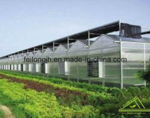 Venlo PC Greenhouse pictures & photos