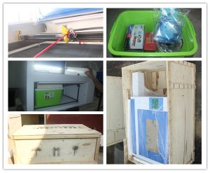 4060 CO2 Laser Engraving Cutting Machine Price pictures & photos