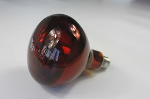 Infrared Heating Lamp R95 pictures & photos