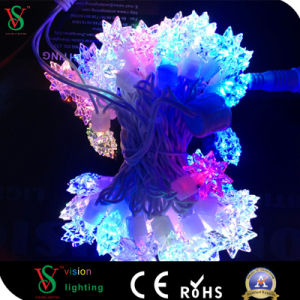 Christmas Light Supplies RGB LED Star Decoration Curtain Light pictures & photos