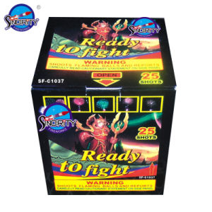 25 Shots Color Box for Europen Market Cake Fireworks pictures & photos
