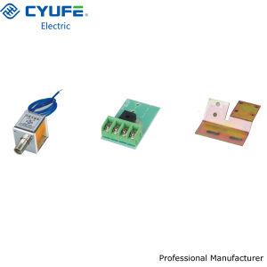 DC220V/110V Locking Electromagnet (DC220V/110V)