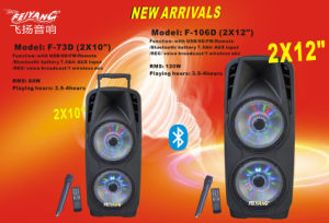Double 12inch Professional Stage Trolley Speaker with Light F106D pictures & photos