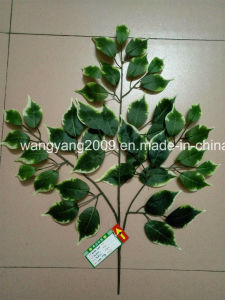 White Edge Green Fake Synthetic Artificial Ficus Banyan Leaves
