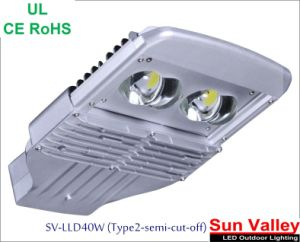 40W, UL, Type II (Semi-Cutoff) Street Light
