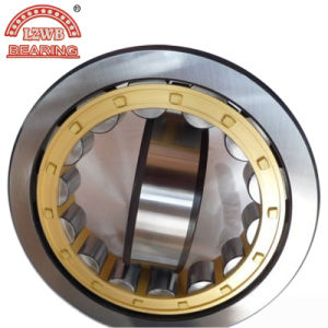 Hot Sale Cylinderical Roller Bearing with Double Row (NNU4938K) pictures & photos