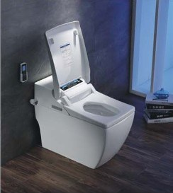 Luxury PP/Ceramic Boday Intelligent Toilet (W1506) pictures & photos
