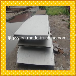 309 310 Stainless Steel Plate Food Grade pictures & photos