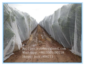 20/10 Mesh Anti Aphids Net pictures & photos