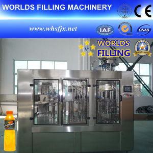 Automatic Bottle Fruit Juice Filling Machine (RCGF16-18-6)