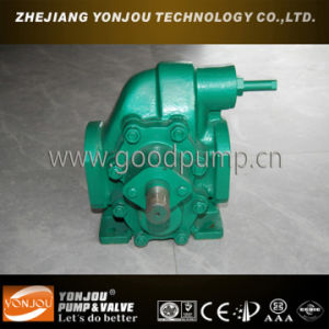 Explosion Proof Gear Pump, Industrial Oil Pump, Vegetable Oil Pump pictures & photos