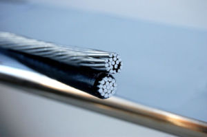 Low Voltage Duplex/Triplex/Quadruplex Aluminum Conductor PVC Insulated ABC Cable pictures & photos