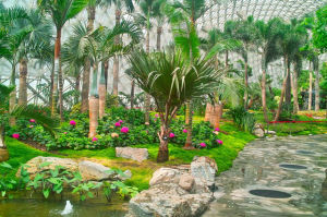 Eco-Sightseeing Greenhouse Conservatory / Hothouse / Big Grower pictures & photos