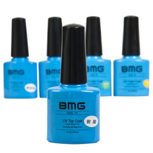 Nail Art UV Gel Polish/Color Polish Gel