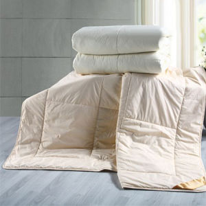 Super Soft Thin Quilt or Comforter