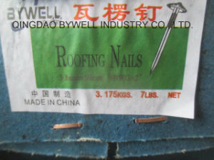High Quality Galvanized for Roofing Nails (2.5 inch & 2 inch *9G, 10G) pictures & photos