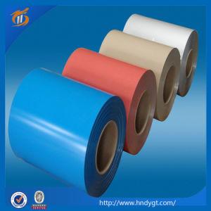 Color Coated Aluminum Coils & Sheets