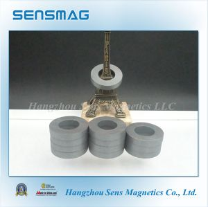 Manufacture Powful Ferrite Ring Magnet with RoHS pictures & photos
