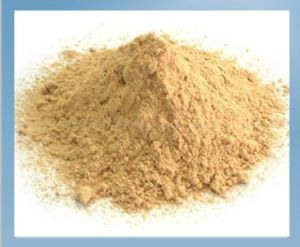Animal Feed Additive Lysine HCl 98.5%, Lysine Hydrochloride pictures & photos
