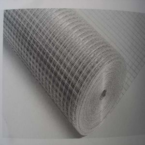 2X2 Galvanized Welded Wire Mesh pictures & photos