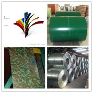 SGCC Prepainted Galvanlume Steel Coils, PPGL Coils