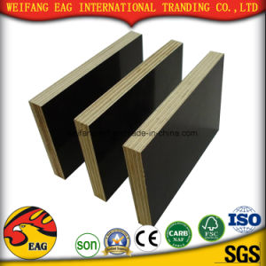Factory Sales Directly Film Faced Plywood for Construction pictures & photos