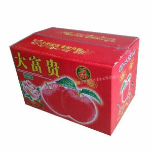 Corrugated Apple Box/Chinese Packaging Box Carton Manufacturer pictures & photos