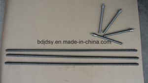 Profession Supply Threaded Rod /Thread Stud pictures & photos