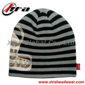 Beanie Hat (XT-W001) pictures & photos