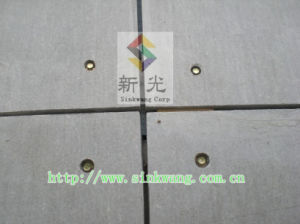 Exterior Wall Fiber Cement Panel (SK-FC-P03)