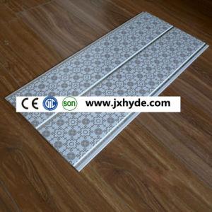 Wet Area Decoration Tiles (RN-169) pictures & photos