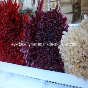 U Tip Hair Extensions Nail Tip Pre Bonded Human Hair pictures & photos