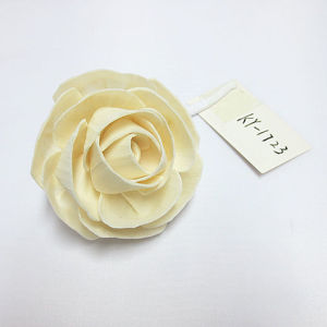 New Products Sola Diffuser Flower with Wick pictures & photos