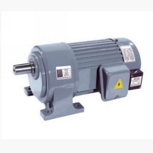 High Quality Small AC Gear Motor pictures & photos