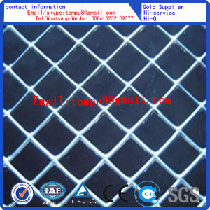 High Quality Hot Sale Small Hole Expanded Metal Mesh pictures & photos
