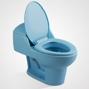 China Wholesales Ceramic Cistern Dual Button One Piece Toilet pictures & photos
