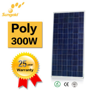Poly Solar Panel 300W Factory Price High Quality Portable Solar System pictures & photos