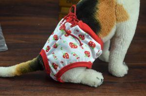 Pet Clothes Pet Physiological Pants 2 Colors pictures & photos