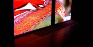 Indoor P5 LED Advertising Display pictures & photos