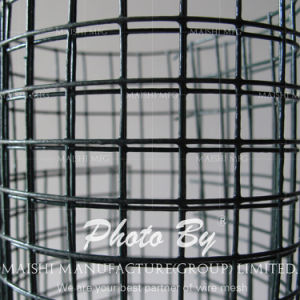 Black Powder Coated Welded Wire Mesh Fencing pictures & photos