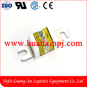 80A Forklift Fuse pictures & photos