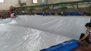 Poly Tarp PE Tarps with UV Treated for Boat Cover Tb005 pictures & photos