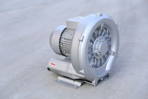 The Single Stage Vacuum Pump of China pictures & photos