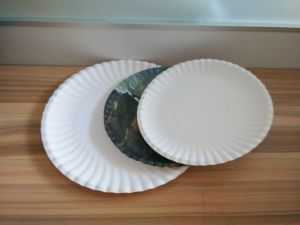FDA Printed Disposable Paper Plates pictures & photos